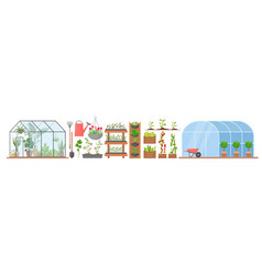 Greenhouse with growing flowers plants vegetables vector