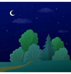 landscape night summer forest vector image
