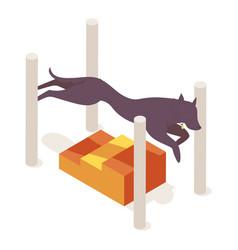 Long body dog hops over long jump agility vector