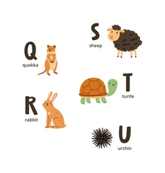 Animal alphabet letters q to u vector image vector image