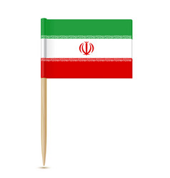 iran flag toothpick vector image vector image