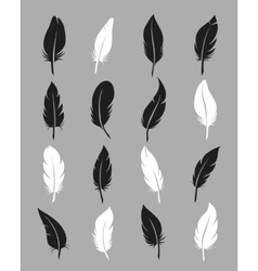 Fluffy feather icons vector image vector image