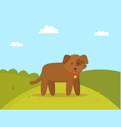 brown puppy on walk colorful vector image