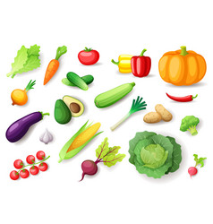 colorful fresh vegetables set isolated organic vector image