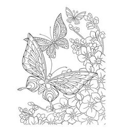entangle stylized butterflies and sakura flower vector image