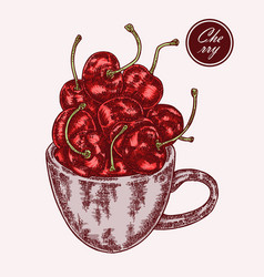 hand drawn cup with cherry vintage vector image