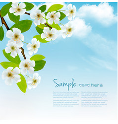 Nature spring background with blossoming tree vector