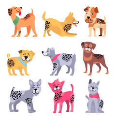 Pedigree dogs isolated cartoon set vector