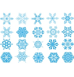 Winter snowflakes vector