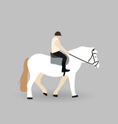 rider on white horse vector image