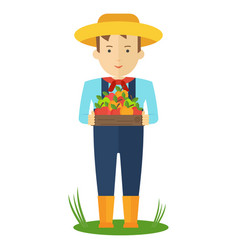 Apple picking farmer man in the garden with boxes vector
