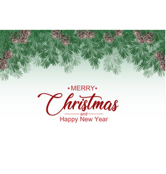 christmas decorative branches with mistletoe vector image