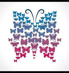 group of butterfly make big butterfly shape vector image