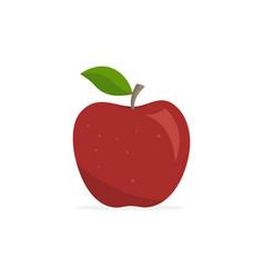 Red apple appetizing fruit vector