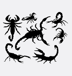 Scorpion animal silhouettes vector