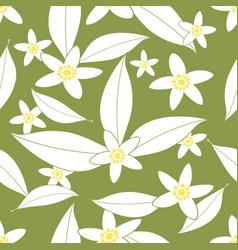 seamless pattern of orange blossom flowers vector image
