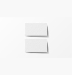 two realistic business cards on white background vector image