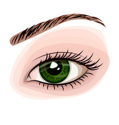 woman green beautiful eye vector image