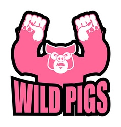 Wild pigs logo for sports team Angry pig vector image