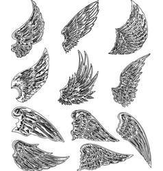 Image a set outlines various fabulous vector