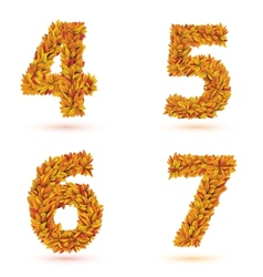 Numbers of autumn leaves collection vector
