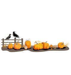 seasonal harvest design vector image