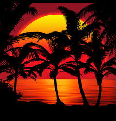 sunset beach with palms sunset landscape vector image