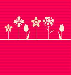 white flowers on pink background vector image