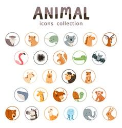 Animal icons collection vector image vector image