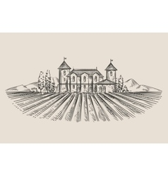 vineyard hand-drawn sketch vector image vector image