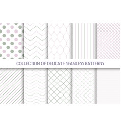 collection of seamless delicate patterns vector image