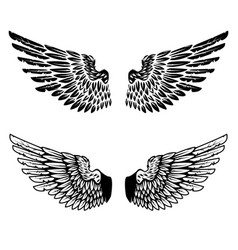 vintage wings isolated on white background design vector image vector image