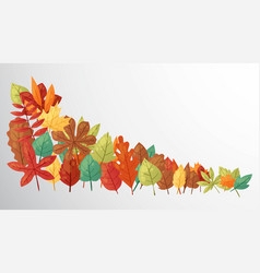 autumn leaves banner green vector image