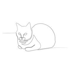 continuous line sitting cat cat bun new vector image
