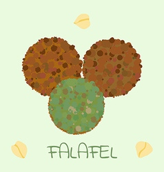 Falafel arabic food vector