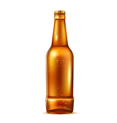 Realistic glass beer bottle with bubbles vector