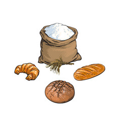 Sketch flour bag bread baguette set vector