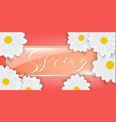 bouquet of white daisy or gerber flowers vector image