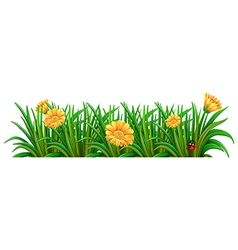 A garden with blooming flowers vector