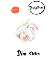 Chinese dumpling dim sum watercolor vector