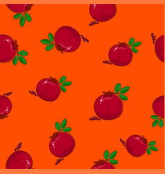Seamless pattern pomegranate on orange background vector