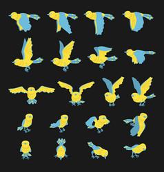 set frame animation carton bird vector image
