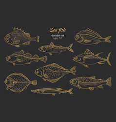 set sea fish gold vector image