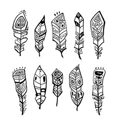 vintage feather set vector image