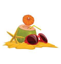 coconut starfish and sunglasses at beach vector image