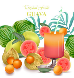 smoothie guava and gooseberry fruits realistic vector image