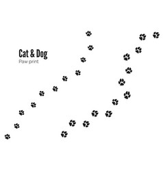 cat and dog paw print pets or animals paw trail vector image