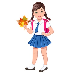 school girl brunette vector image