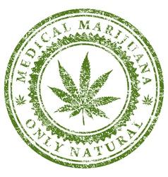 Medical Marijuana vector image vector image