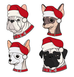 with cute dogs in christmas hats vector image